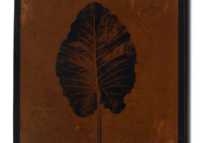 Leaf-3-mixed-media-on-iron