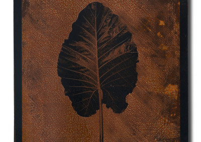Leaf-4-mixed-media-on-iron