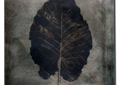 Leaf-5-mixed-media-on-iron