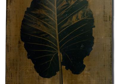 Leaf-7-mixed-media-on-iron