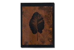 leaf4_tmb
