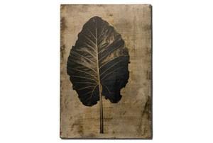 leaf6_tmb